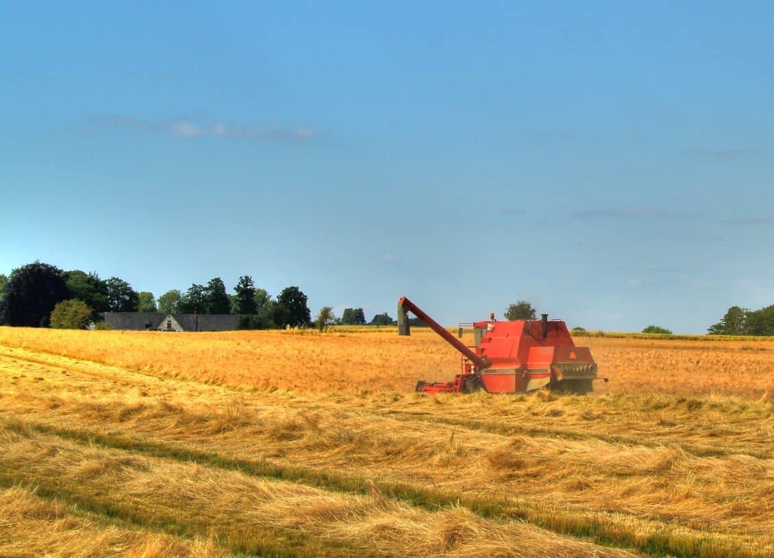 Ancheta agricolă din 2014: Află când începe și ce presupune