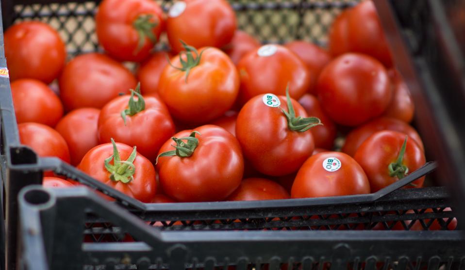 Bio România: Fermierii se mai pot înscrie în agricultura ecologică până la 29 august 2014