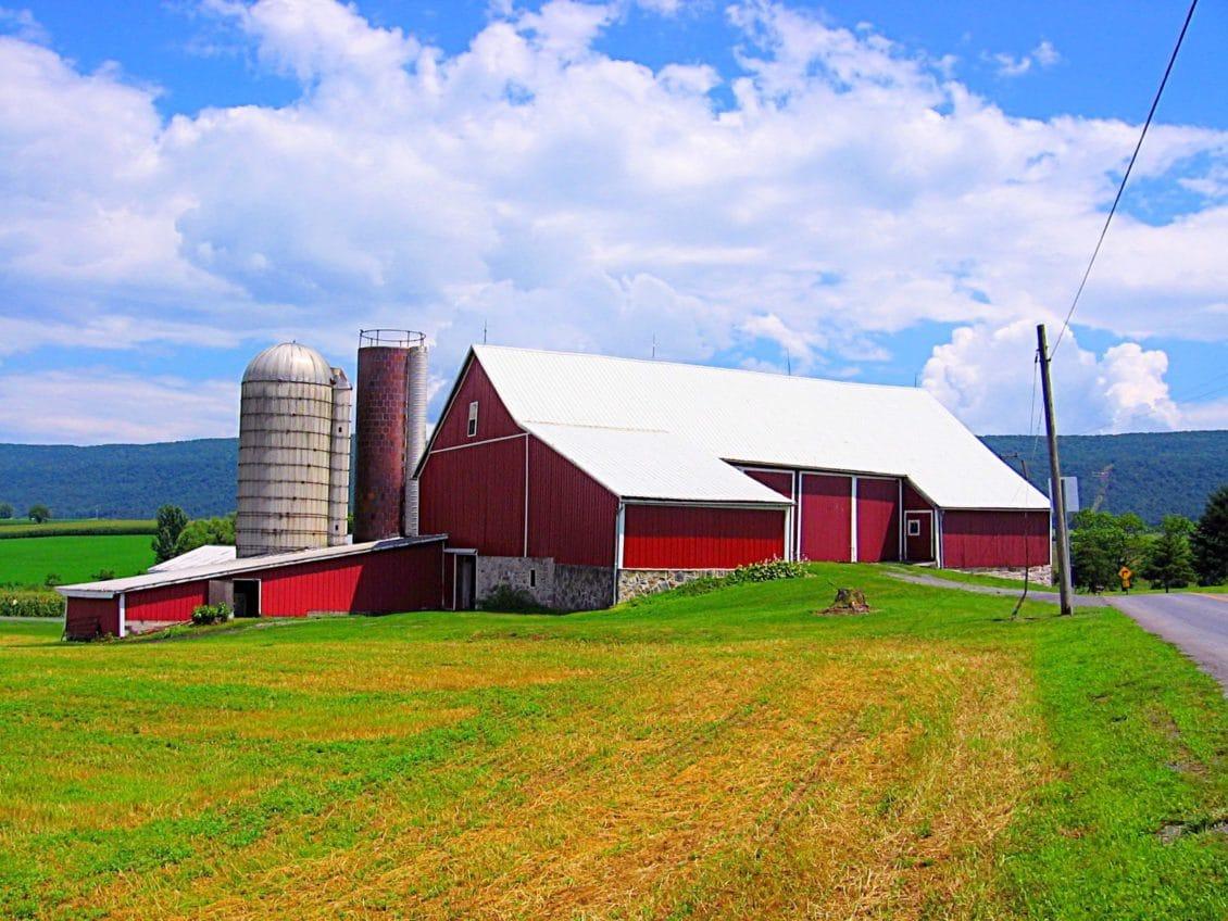 Lipsa spaţiilor de depozitare, o problemă majoră în agricultura românească