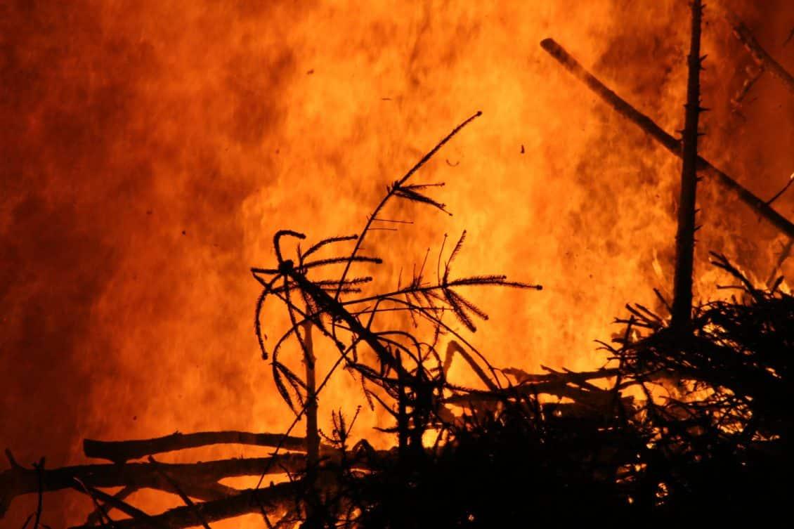 APIA le cere fermierilor să nu ardă miriștile. Vezi ce riscă cei care nu respectă condițiile de mediu!