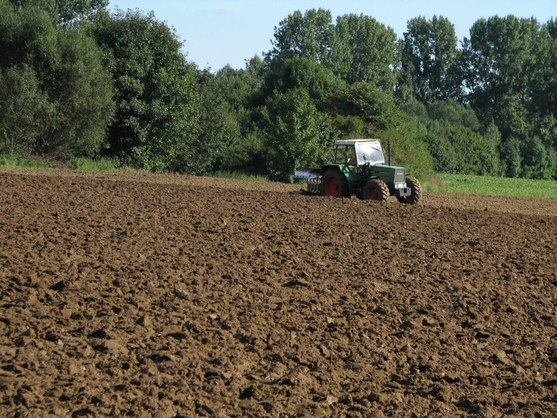 Ghețea, CEC Bank: Agricultura va fi noul boom în economia românească