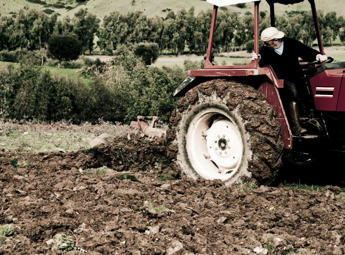 Olt: 200 de mici fermieri, fruntaşi la accesarea de fonduri europene