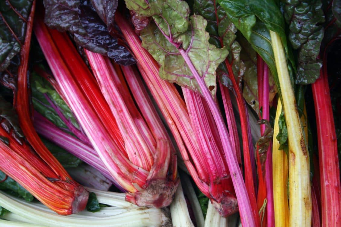 Rubarba, leguma care poate aduce un câștig anual de până la 18.000 euro/ha