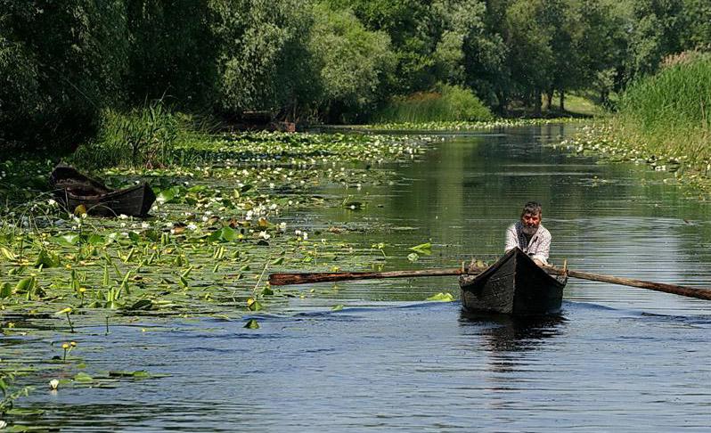 Turiștii care au vizitat Delta Dunării, marile orașe și stațiunile montane au preferat hotelurile de 3 stele, în trimestrul I