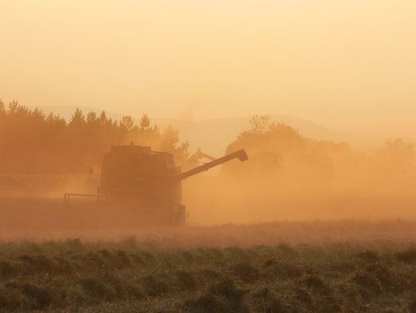 Irimescu vrea un sistem informatic de raportare  şi centralizare a datelor privind producţiile agricole