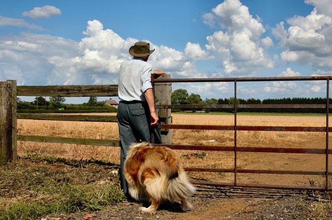 Fermierii renunță la PFA