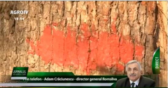 Adam Crăciunescu (Romsilva): Aveam de gând să mă retrag, nu era nicio problemă