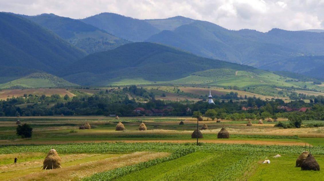 Viorel Matei, fermier: Fonduri de investiţii din străinătate dau 6-7000 de euro pe hectarul de teren din România