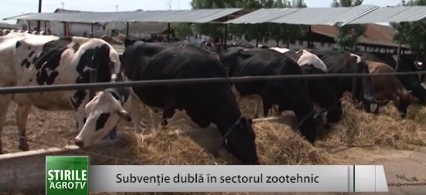 Subvenții mai mari în domeniul zootehnic