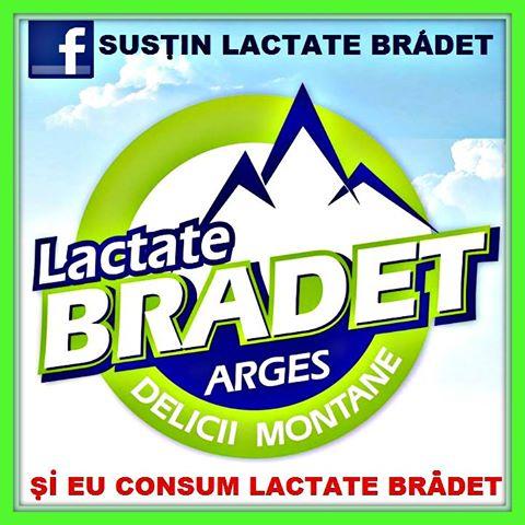 Lactate Bradet- evolutie atipica in categoria de pagini de Facebook din industria de lactate la nivel de engagement