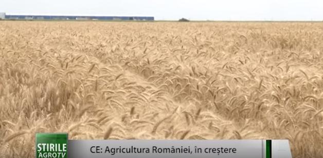 C.E.:Agricultura din România este în creştere