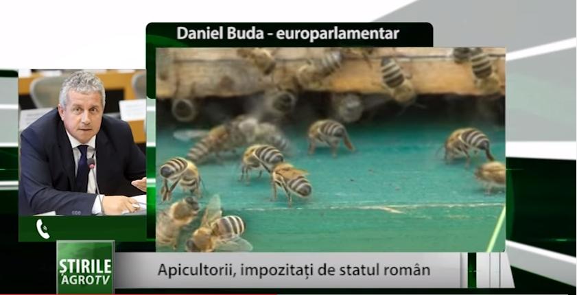 Apicultorii, impozitaţi de statul român