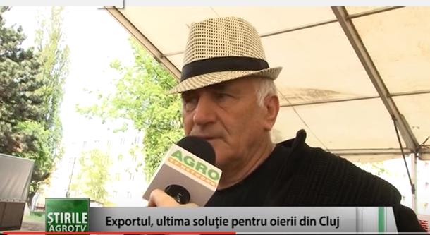Exportul, ultima soluție pentru crescătorii de ovine din Cluj