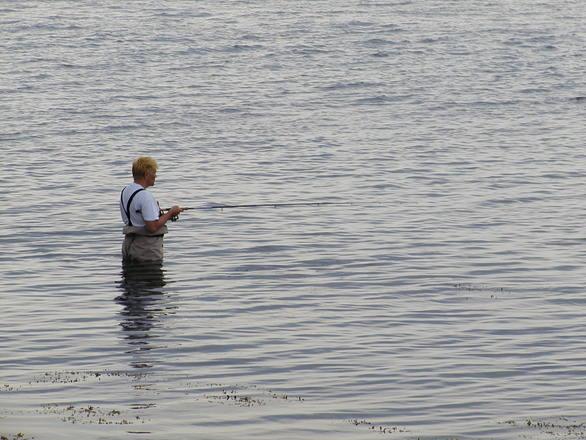 Modificări privind pescuitul în scop familial al scrumbiei