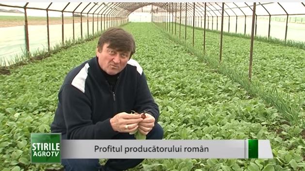 Profitul producătorilor români: Cât câștigă un legumicultor după vânzarea unei legături de ridichi