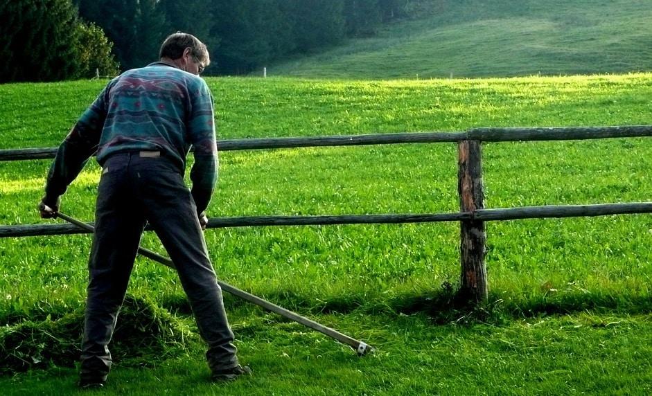 Guvernul vrea să reducă TVA-ul pentru umblatul cu coasa și săpatul gropilor