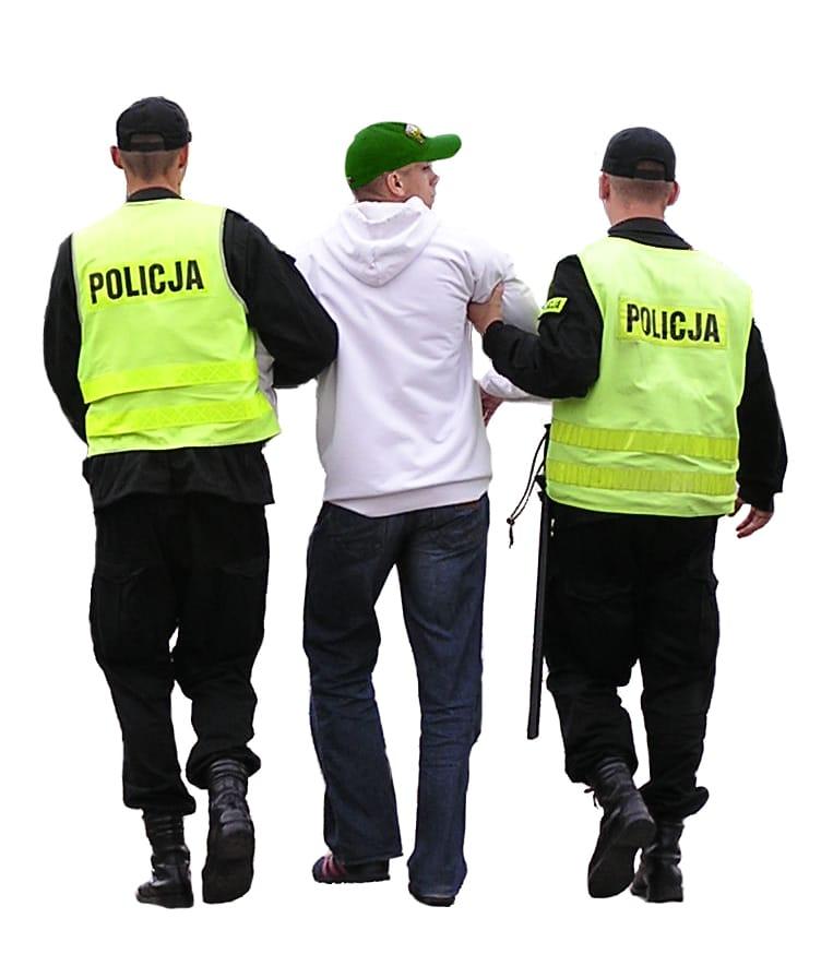 Buzău: Tânăr, la furat de lucernă