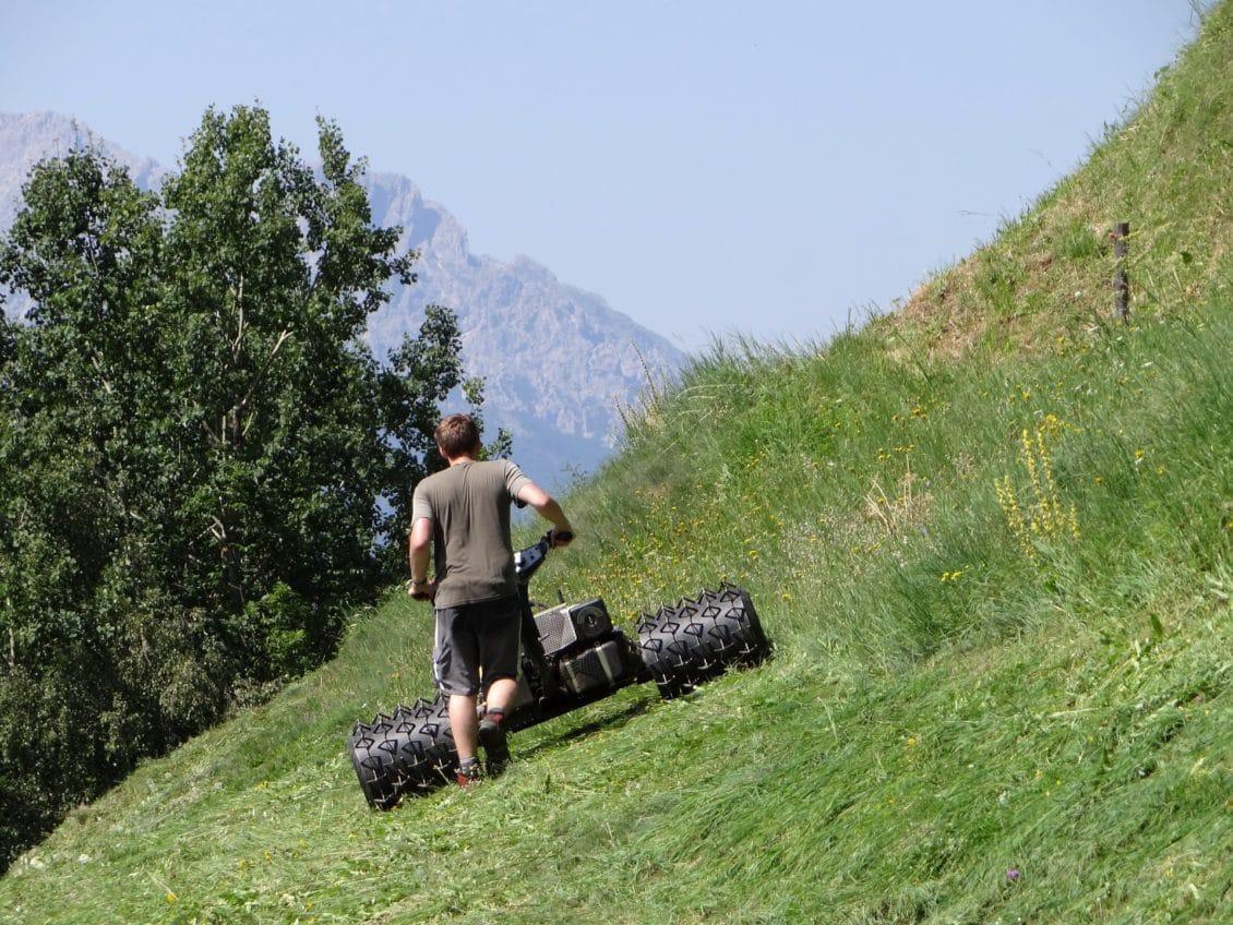 Propunere pentru protejarea muncitorilor români din agricultura italiană