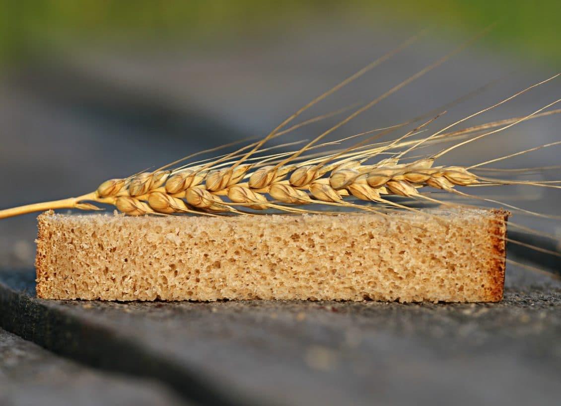 Daniel Constantin critică exportatorii de grâu