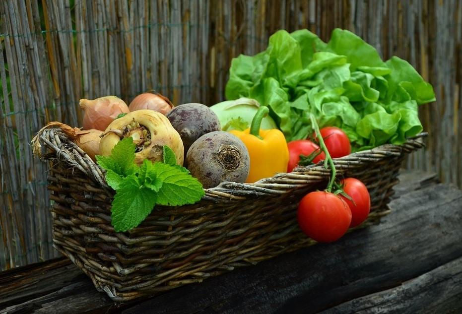 Influenţa temperaturilor negative asupra culturilor agricole