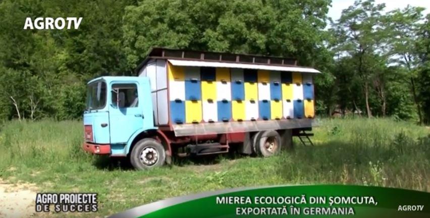 Mierea ecologică din Şomcuta, exportată în Germania