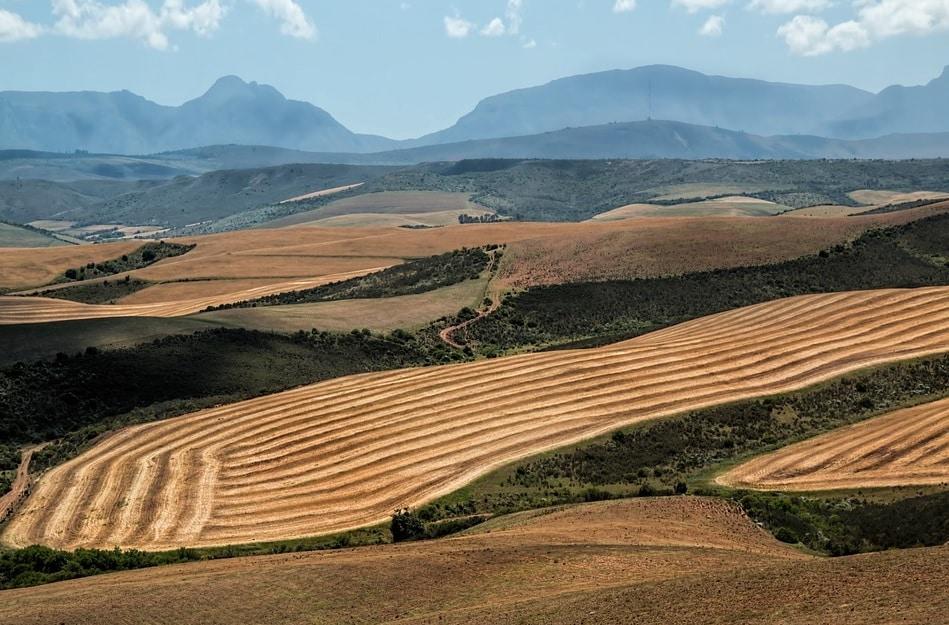 Statul trebuie sa sprijine agricultorii