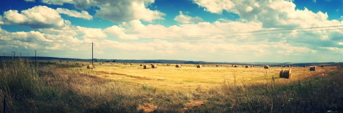 Ce spune Cristian Tantareanu despre vanzarea de terenuri agricole cetatenilor straini